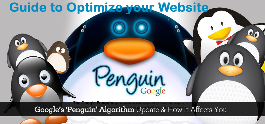 optimize-your-website-with-penguin-4